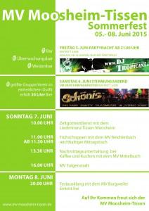 Sommerfest Plakat_000001
